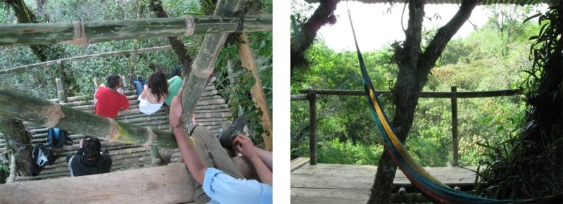 Xilitla Treehouse